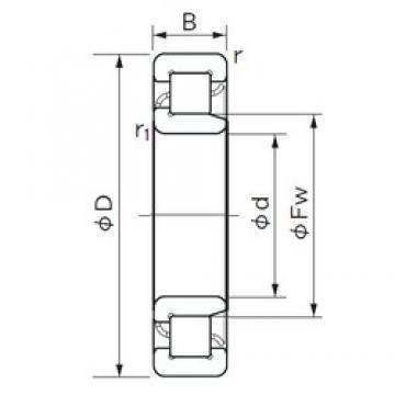 25 mm x 80 mm x 21 mm  NACHI NJ 405 cylindrical roller bearings