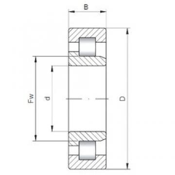 260 mm x 360 mm x 46 mm  Loyal NJ1952 cylindrical roller bearings