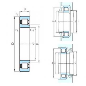 300 mm x 460 mm x 74 mm  PSL NJ1060 cylindrical roller bearings